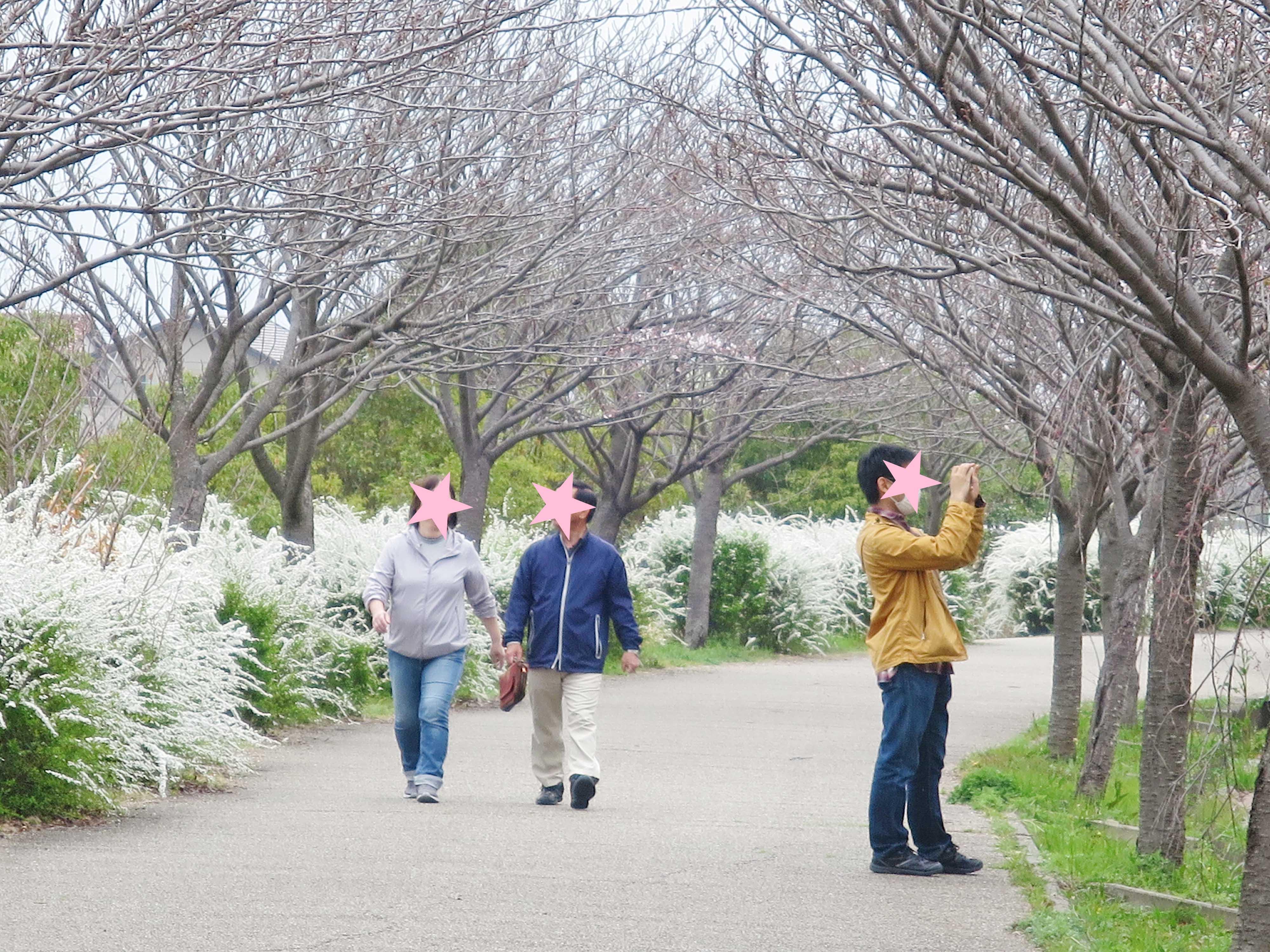 公園内の散策、写真を撮る人も