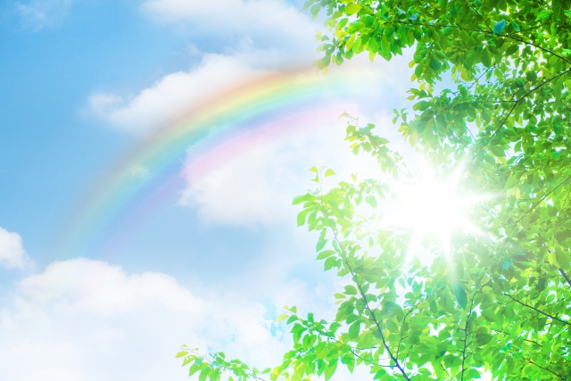新緑と青空と虹